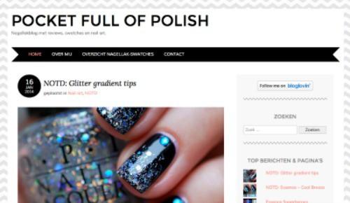 Must read blogs: Pocket full of Polish