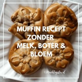 Havermout muffins maken met yoghurt – zonder boter & bloem