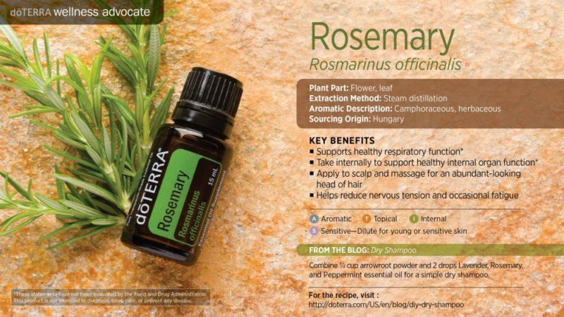 essentiele olie rozemarijn